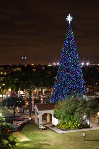 Delray Beach 100 ft Christmas Tree